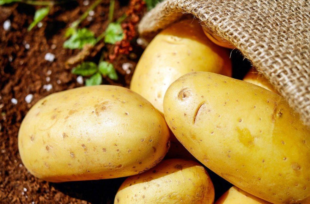 La patata presente todo el año